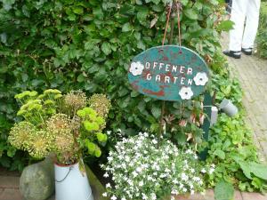 kfd Liebfrauen zu Besuch im Garten