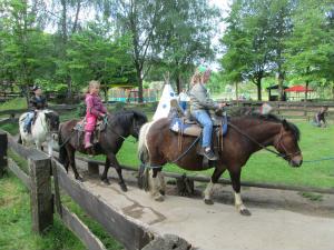 Ausflug-zum-Ponyhof