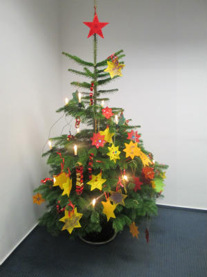 Kindergarten-St-Helena-schmueckt-Weihnachtsbaeume-der-Barloer-Banken