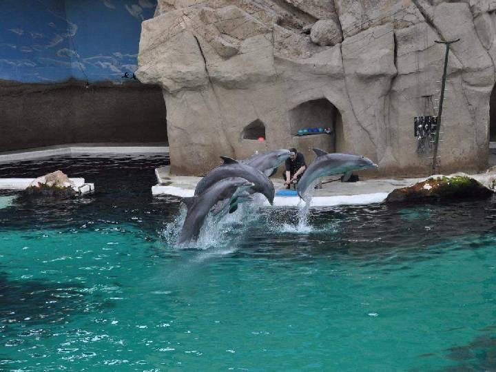 Zoologen-auf-Entdeckungstour-|-Sommerferienspiele-2017-Tag-4