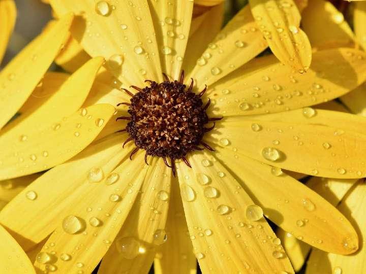 """Impuls am Abend - """"I'm singing in the rain…�"""