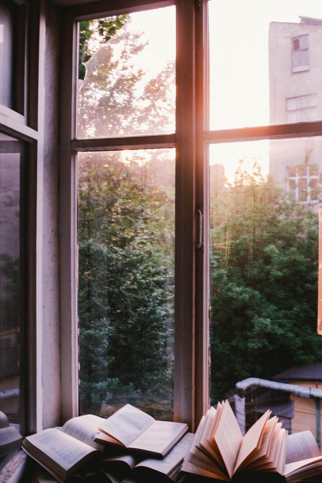 Bücher am Fenster